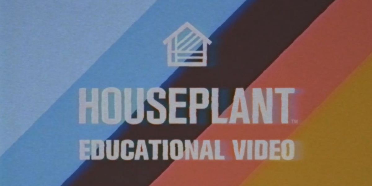 Seth Rogen's Houseplant is Producing Cannabis and Entertaining Educational Videos