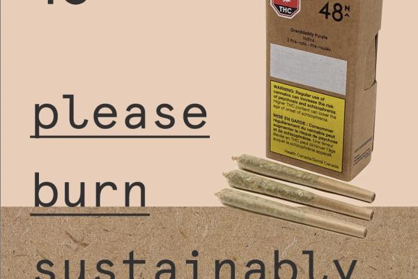 48N cannabis packaging 2