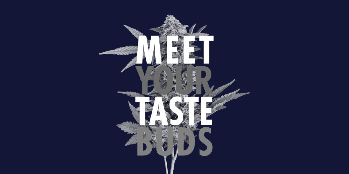 7ACRES Campaign Helps Consumers Discover that Taste is just as Important as THC